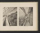 Two views of interiors of the conservatories of the École Nationale Superieure d'Horticulture in Versailles, France