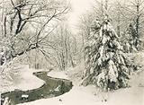 Winter Scene in Fairmount Park, Philadelphia