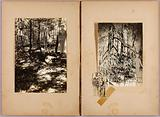 N American Soldiers, Men in Mangrove, study folder for book Concealing Colouration in the Animal Kingdom