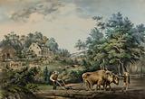 American Farm Scenes. No. 1.