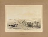 Indians Hunting Buffalo – no. 29.