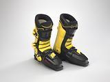 Ski boots worn by Seba Johnson