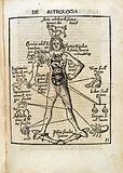 De Astrologia. Astrological Man: 1503