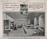 Crimean War: Florence Nightingale at Scutari Hospital, 1856, plus a portrait drawing