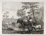 Four cows and a goat at a watering hole with a windmill in the distant background