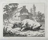 A bull resting in an enclosure outside a thatched cottage