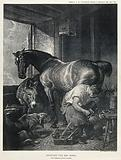 A mare is shod by a farrier in the company of a donkey and a dog