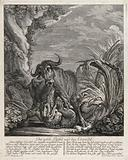 A crocodile fighting with a buffalo in shallow water