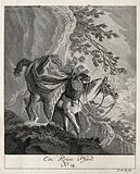 A horse packed with luggage, guided down a steep mountain by a horseman holding its reins