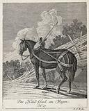 A hand-horse with harness, blinkers and girth standing in a paddock