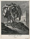 A large mule carrying a load with a dog on top is walking on a rocky path with a town in the background