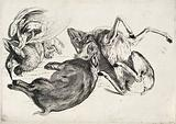 A dead boar, deer, pheasants and other animals