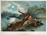 A crocodile emerging from the Zambezi river and biting off a woman's leg