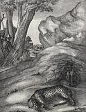 A tiger lies in the foreground shot by an archer who appears between the trees