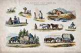 A collection of rural scenes, including a boy carrying a milk churn, a woman selling produce by the roadside, and horses