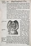 Acephali, a member of the headless nation