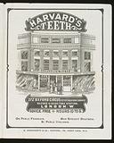 Harvard's Teeth, 272 Oxford Circus, London