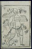 Acupuncture chart, stomach channel of foot yangming, Chinese