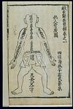 Measurements of the bones, back view, Chinese woodcut