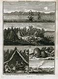 Sailing ships at sea, turnip-like plants found in northern Russia and the Samoyed people with their tents and boats, …