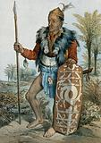 Borneo: a Dayak warrior, standing holding a spear and a shield