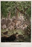 Elephants and hippopotamuses in the jungle