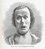Terror, from Darwin's Expression of Emotions in Man…