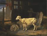 Heath Ewe and Lambs