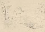 Sketch of Trees and Hills above the Barton Farm House, Isle of Wight