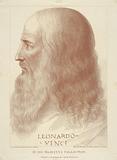 Portrait in profile of Leonardo da Vinci