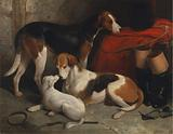 A Couple of Foxhounds with a Terrier, the property of Lord Henry Bentinck