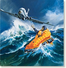 Air rescue by Wilf Hardy